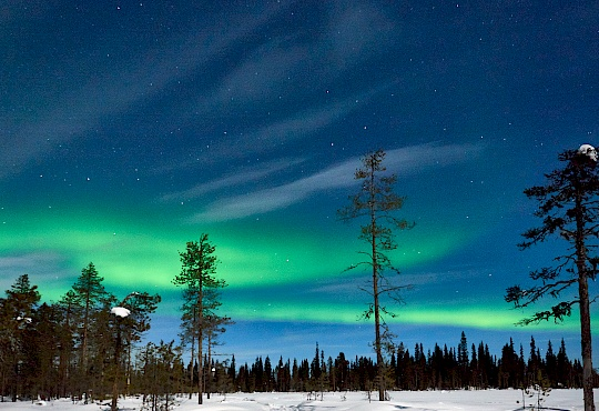 p2173539lappland-littlediscoveries_net.jpg
