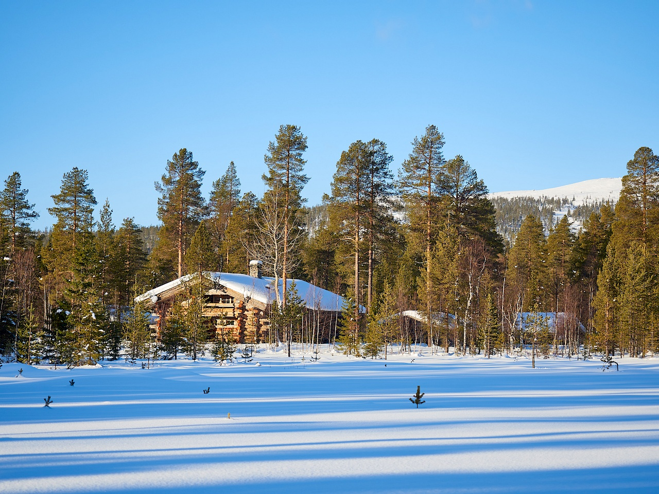 Winterzauber in Lappland