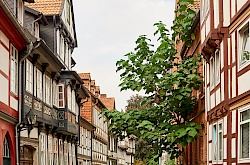 p1010773-hildesheim-littlediscoveries_net.jpg