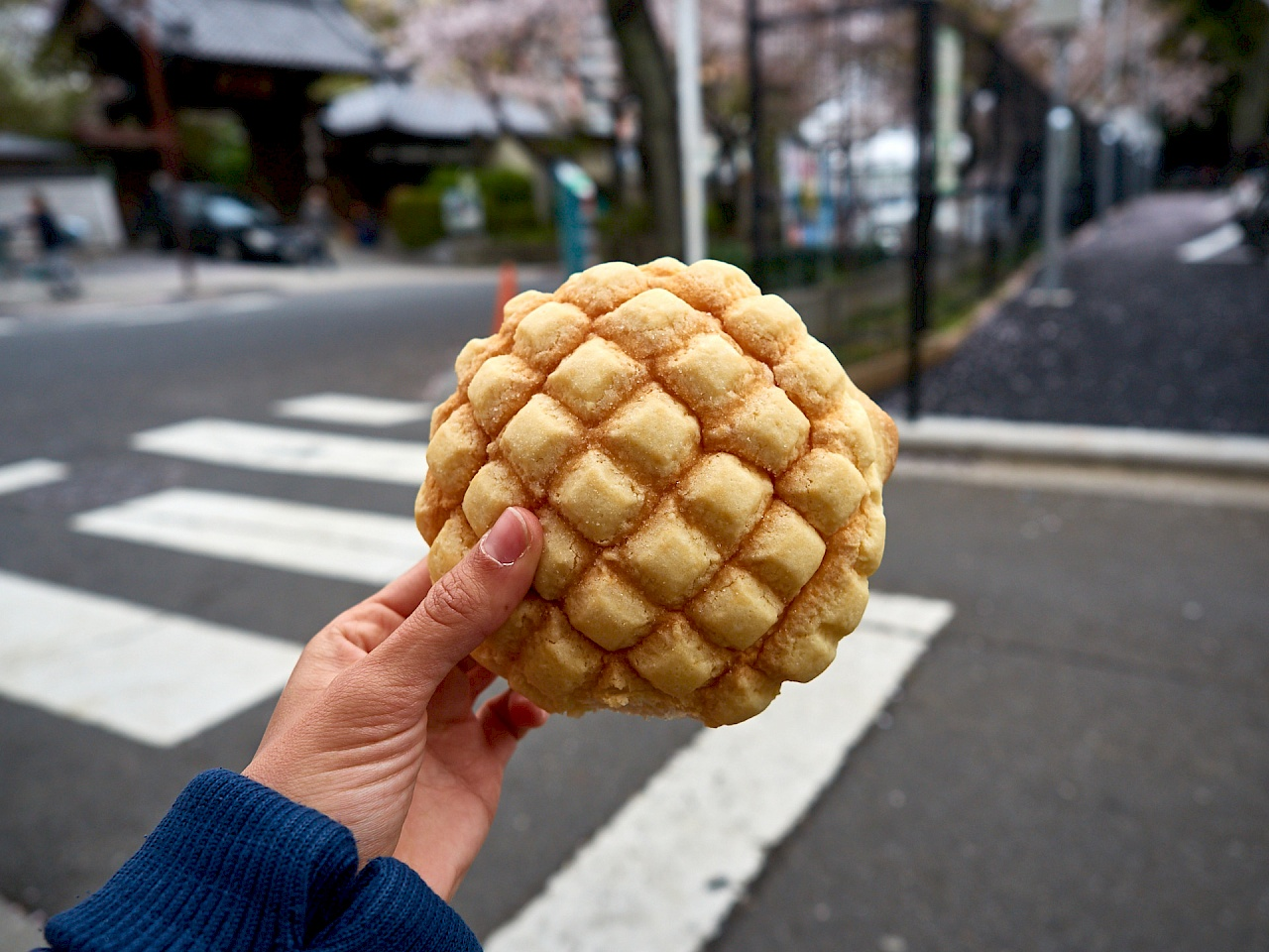 Melon pan aus Japan